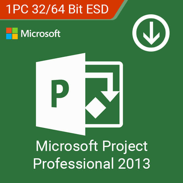 Project Professional 2013